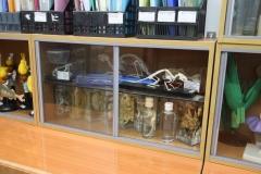 Оснащение кабинета биологии (3)